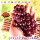 坤田水果 高甜度日本山梨縣溫室珍珠葡萄禮盒(1箱)單箱280公克3串
